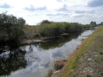 121 Ocean Park Dr, Lehigh Acres, FL - Coming Soon