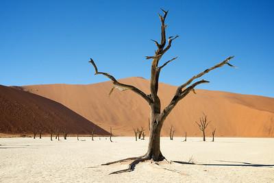 Namibia, July 2013.