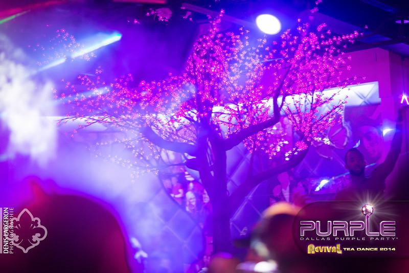 2014-05-11_purple04_514-3257784509-O.jpg