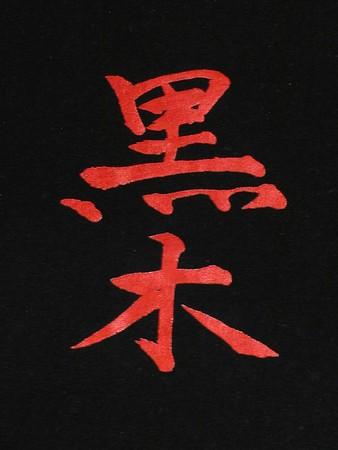 Kuroki Family 2004