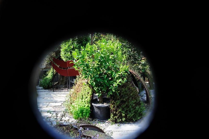 Festival des Jardins Chaumont DSC_1328.jpg