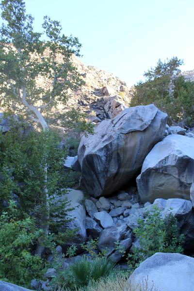 05 Cougar Canyon (132).JPG