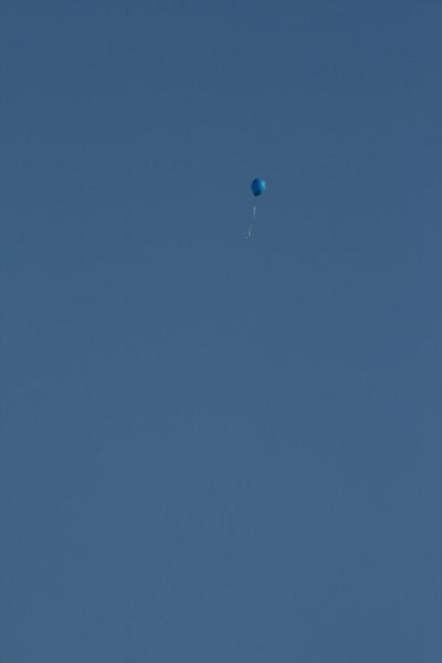 Car Balloon 056.jpg