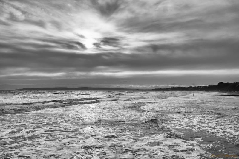 Windy Shore