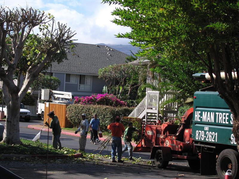 20060117_008522.JPG