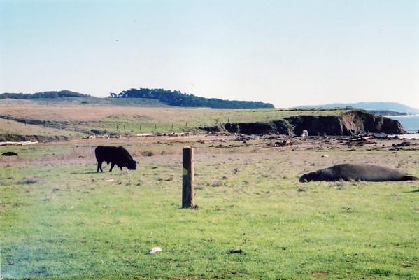 California.2002