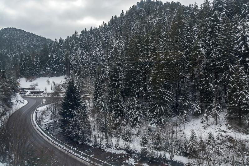 Black Forest Line-7518.jpg