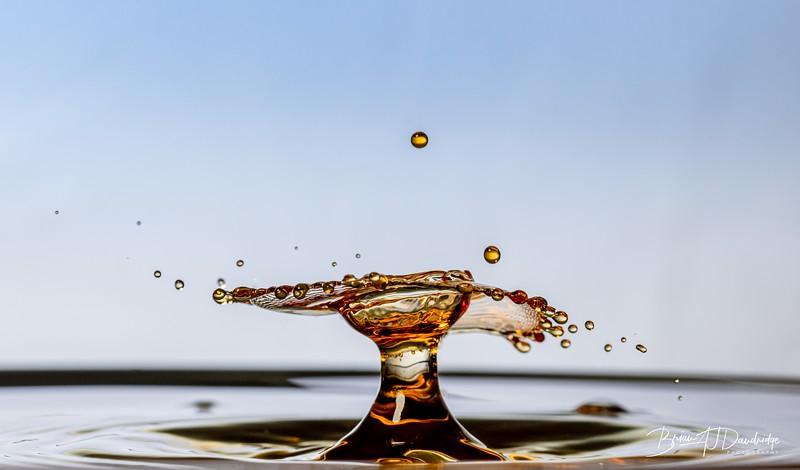 Splash-Art-Orange-1524.jpg