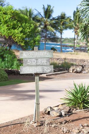 Jonathan and Anna's at Kukahiko Estate in Kihei, Maui