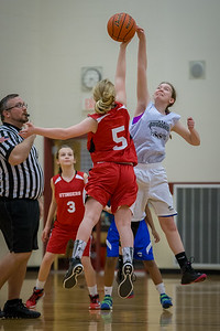 2016 Girls Advanced Hoops | Red Lion Tournament