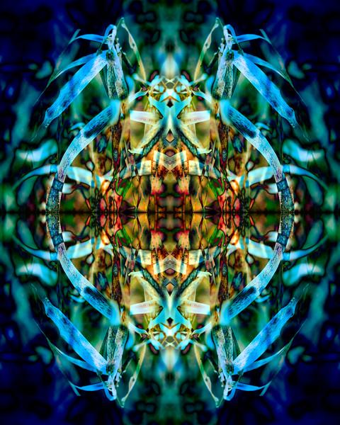 20210125-JAN_7789-Mirror-1-3.jpg