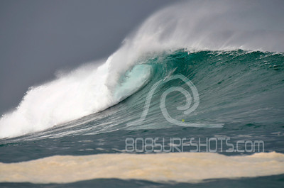 Outer Reef 12-30-12