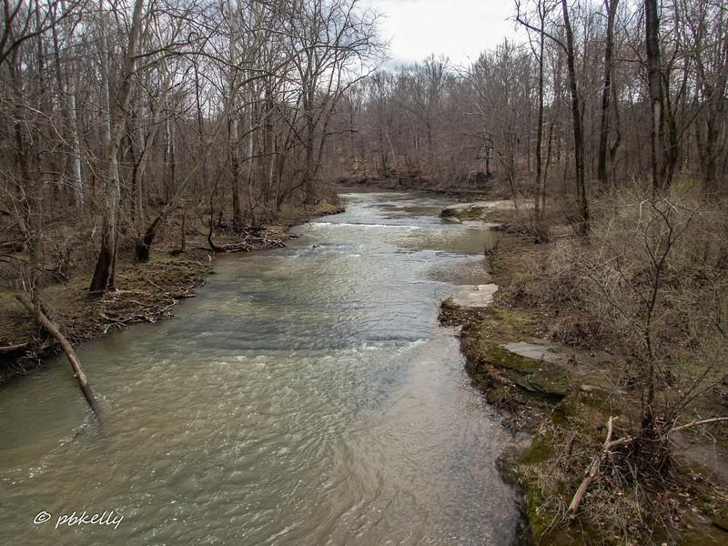 river 040720-2.jpg