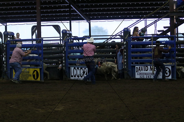 Saturday Mutton Bustin I
