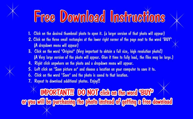 Free Download Instructions final (8).jpg