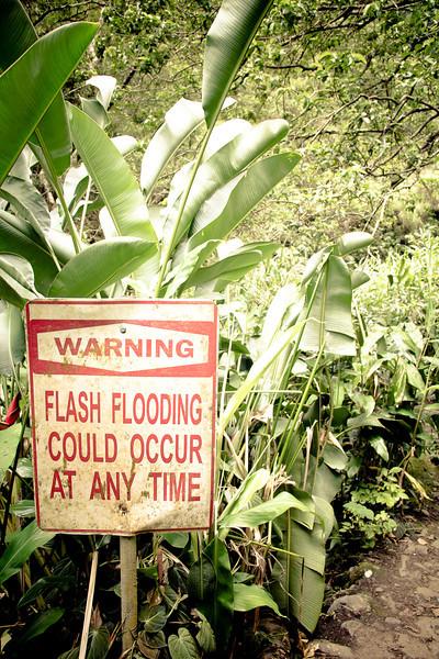road to hana flash flooding.jpg