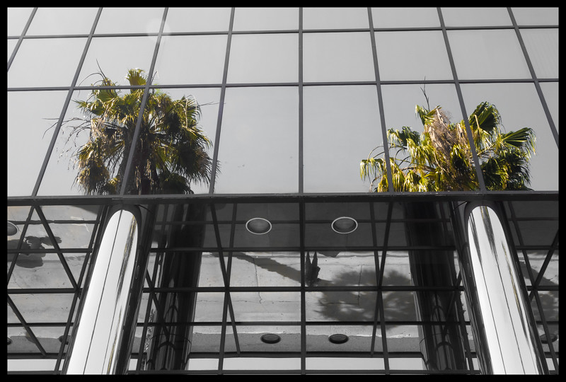 June 28 - Pillars and trees.jpg