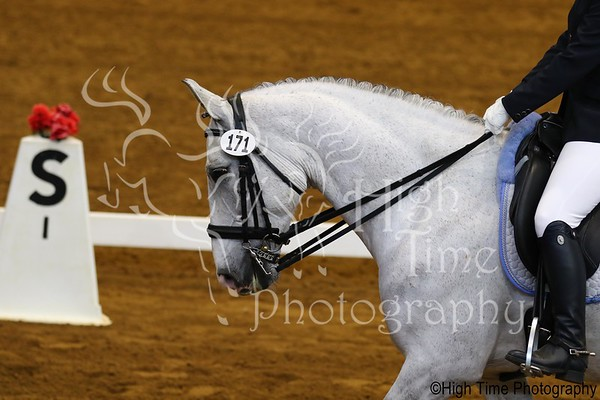 2021 Lexington Spring Dressage