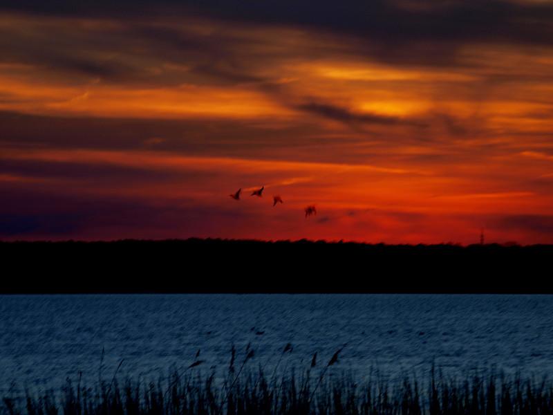 brigantine sunset.jpg