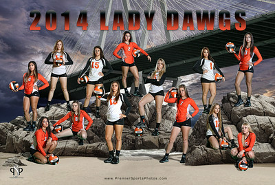 2014 LPHS Volleyball