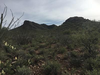 Artesa Mtns, Peak 3381 -  Dec. 30, 2019
