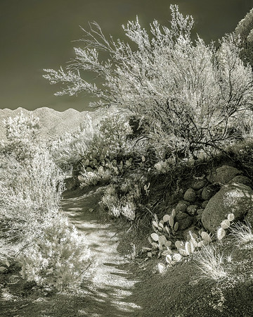 Piedra Lisa Trail in IR