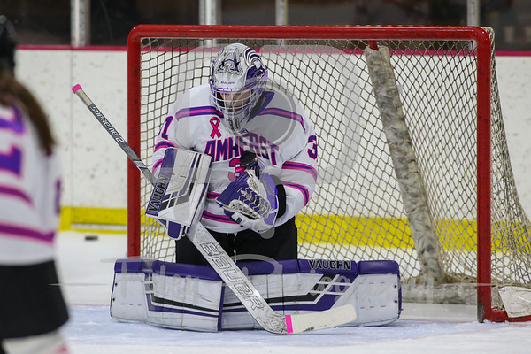 Williams at Amherst