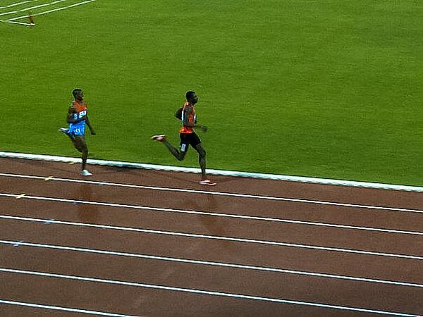 IAAF_001.jpg