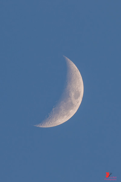 20191231-BoxleyValley-Moon-1wm.jpg