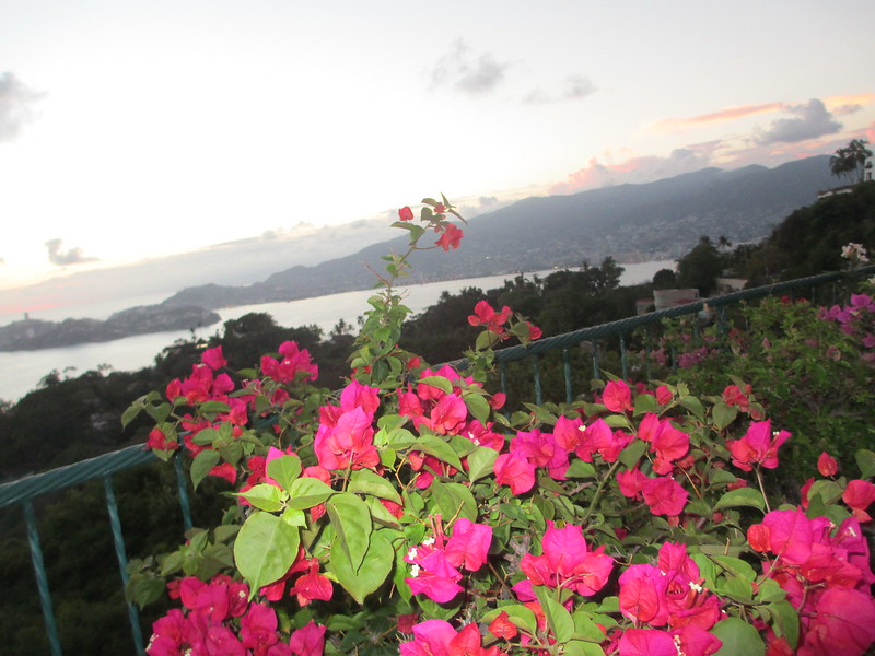 Acapulco 2014 042.JPG