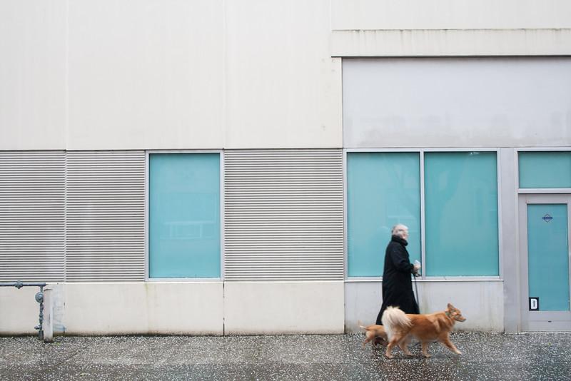 Portland-2013-15-©Barak Shrama-50.jpg