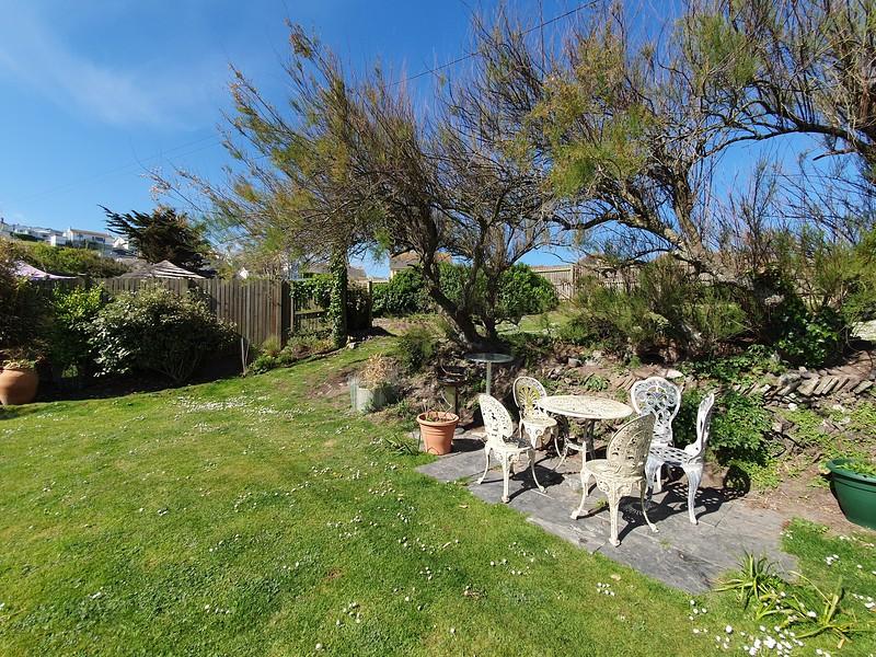 back garden looking good.jpg