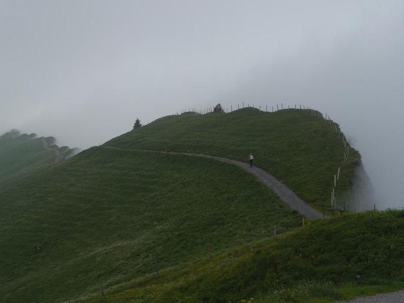@RobAng 2013 / Bergspaziergang Hochybrig, Muotathal, Illgau, Kanton Schwyz, CHE, Schweiz, 1742 m ü/M, 2013/07/07 14:25:04