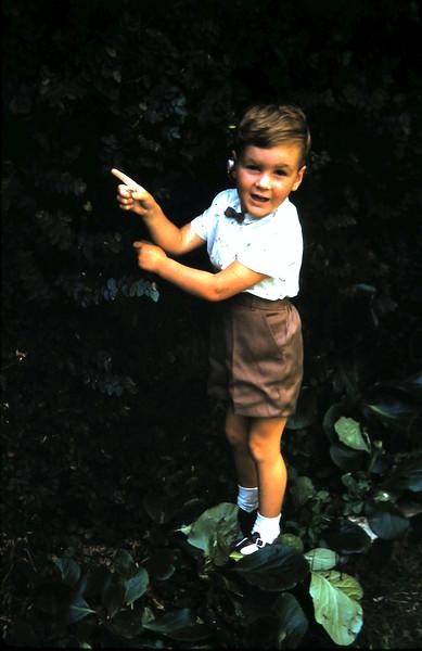 1961-2 (6) Andrew 3yrs.JPG