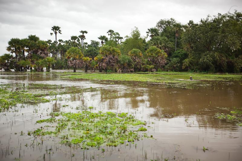 2011 09/24: Tonlé Sap Lake