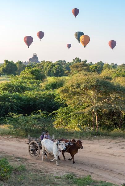 Hot-air Balloons, Bagan