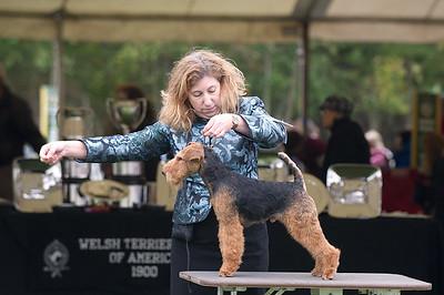 Montgomery Terrier Show 2015