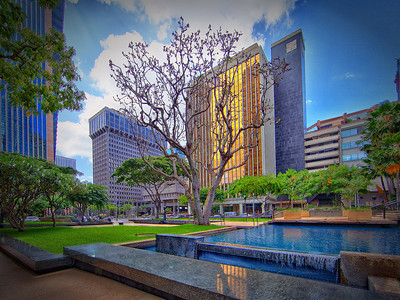 Urban Honolulu TEST