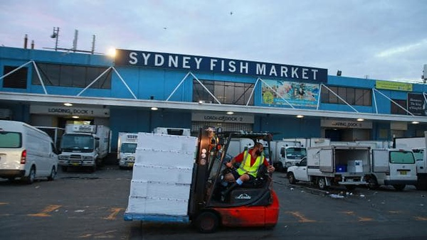 Sydney Fish Market (photo credit: The Australian)