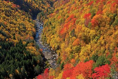 West Virginia Autumn