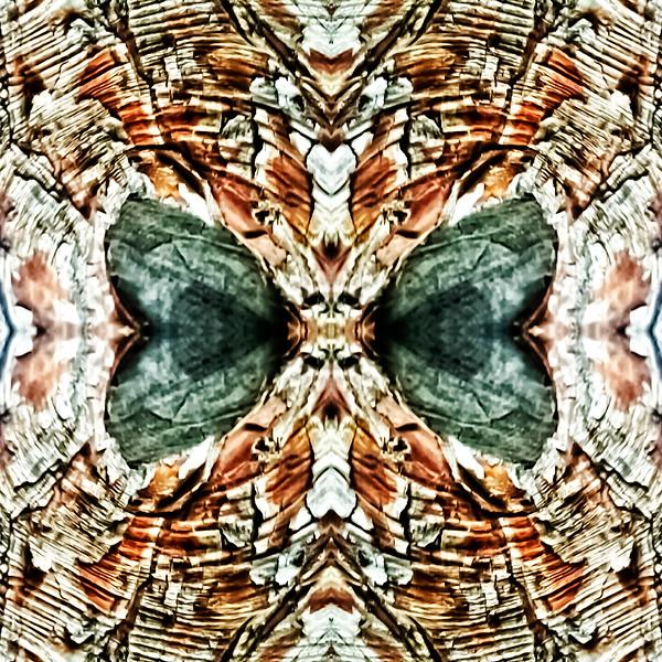 Mirror16-0015 16x16.jpg
