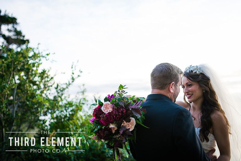 Third Element Photo Co Lina + Rett Carmel Bay Area Wedding Photographer_0038.jpg