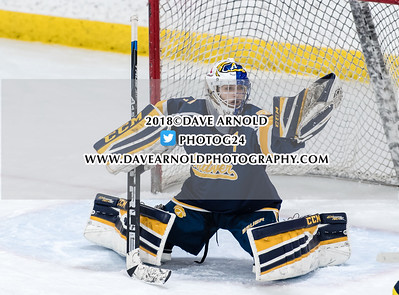 3/6/2018 - Girls Varsity Hockey - Andover vs Austin Prep