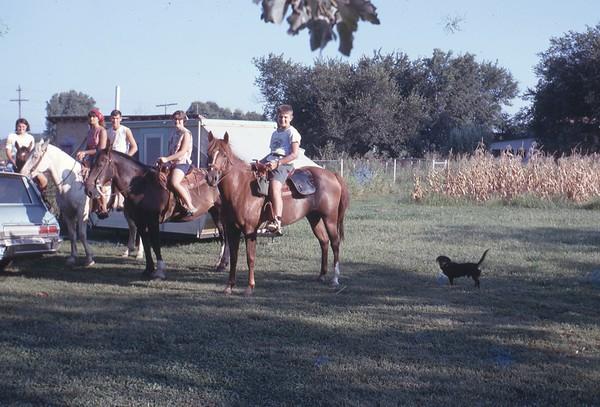 Marsha & Horses