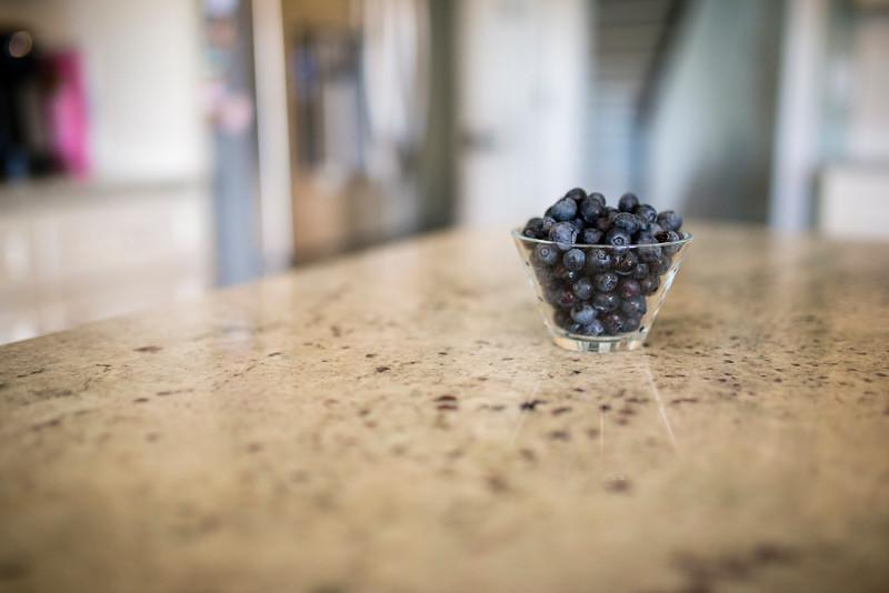 2015 August Random-08_10_15-62 Blue Berries.jpg