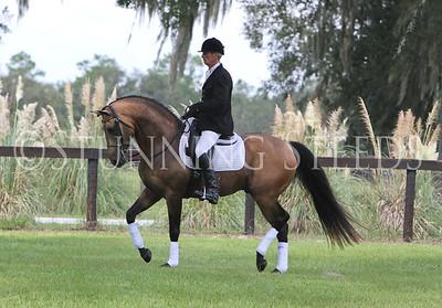 El Demarco-Under Saddle