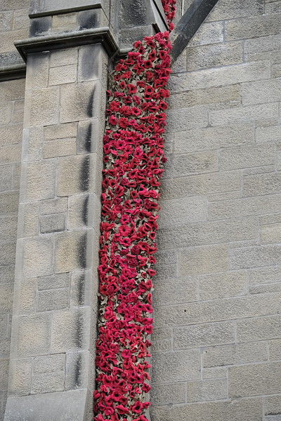 Knitted Poppy Cascade