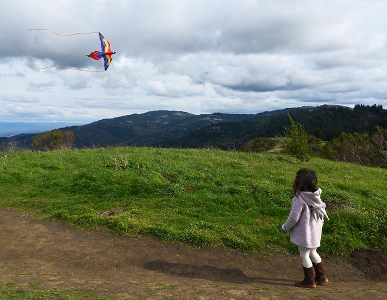 WH_SM_Saskia-Marchant_2020PC-people-kite_UNK_165.jpg