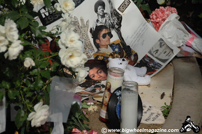 This was like showing up at a car crash long after the victims had been taken away and you are looking at the wreckage of the cars and the disassembled parts from the cars all over the street.... that may be the best way to describe it.  Neverland Ranch - after Michael Jackson's death - Los Olivos, CA - July 11, 2009