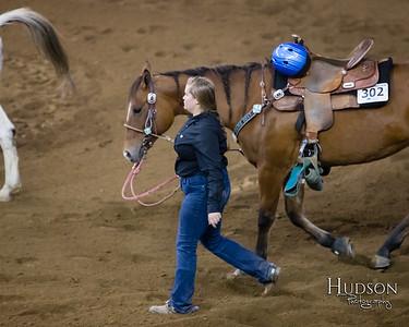 05 Cut Back Horse Sr